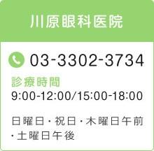 電話番号:03-3302-3734